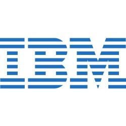 IBM Windows Remote Desktop Services CAL 2012 (5 User) - Multi 5licence(s) Multilingue